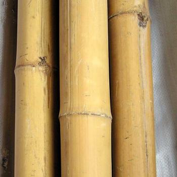 Бамбуковые опоры 2-3 см. Китай.