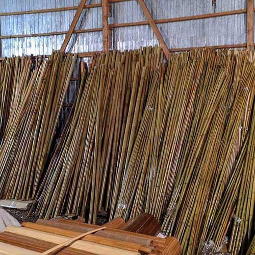 Бамбук натуральный 1-2 см фото
