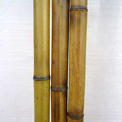 Бамбук натуральный 2,5-3 см