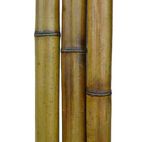 Бамбук натуральный 4-5 см