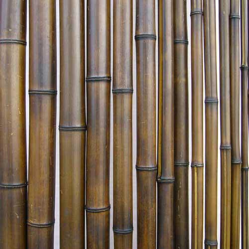 Бамбук ствол. Цвет шоколад.