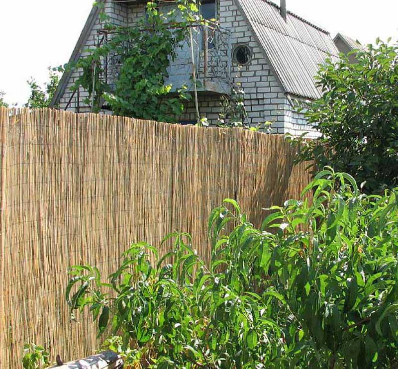 Тростниковые заборы и камышовые маты