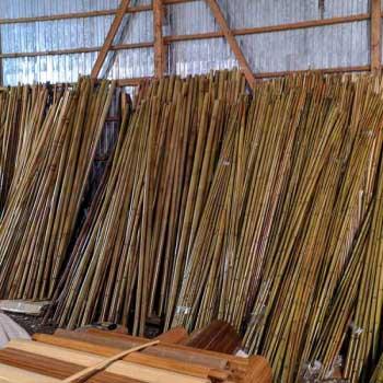 Бамбук натуральный 3-4 фото