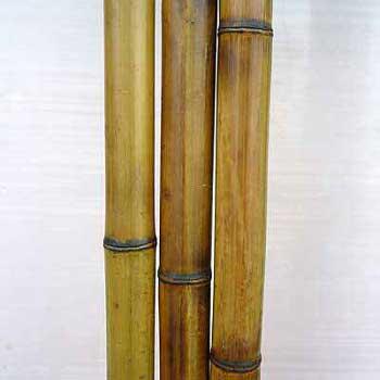 Бамбук ствол стандарт 2 - 3 см