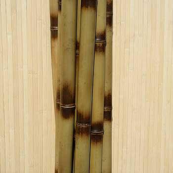 Бамбук ствол узелковый 4 - 5 см
