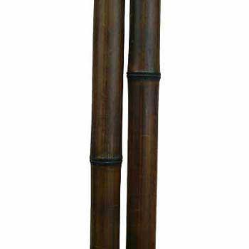 Бамбук ствол шоколад 3 - 4 см