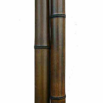 Бамбук ствол шоколад 5 - 6 см