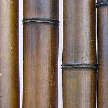 Бамбук ствол шоколад 9-10 см