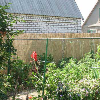 Тростниковые заборы в интерьере