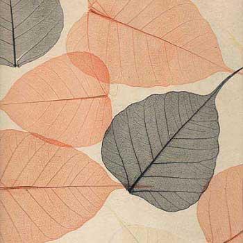 Натуральные обои Листья PWF-24
