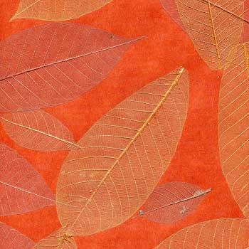 Натуральные обои  Листья Прима Рохо 5,5 м