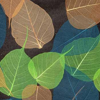 Натуральные обои Листья Прима Верде 5,5 м