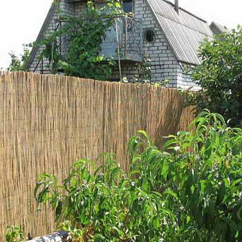Тростниковый забор 140 x 300 см