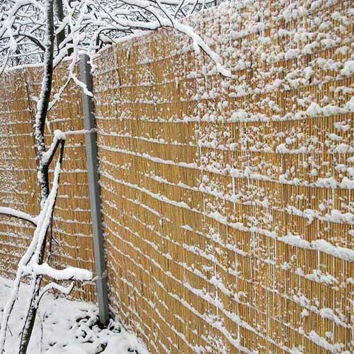 Заборы и изгороди из тростника и камыша