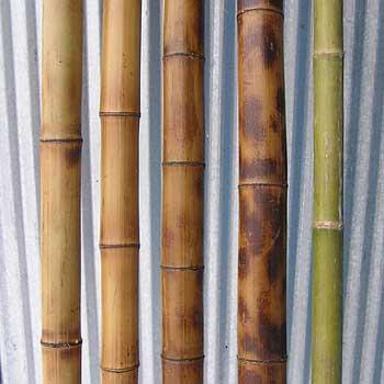 Бамбуковые палки, стволы, опоры