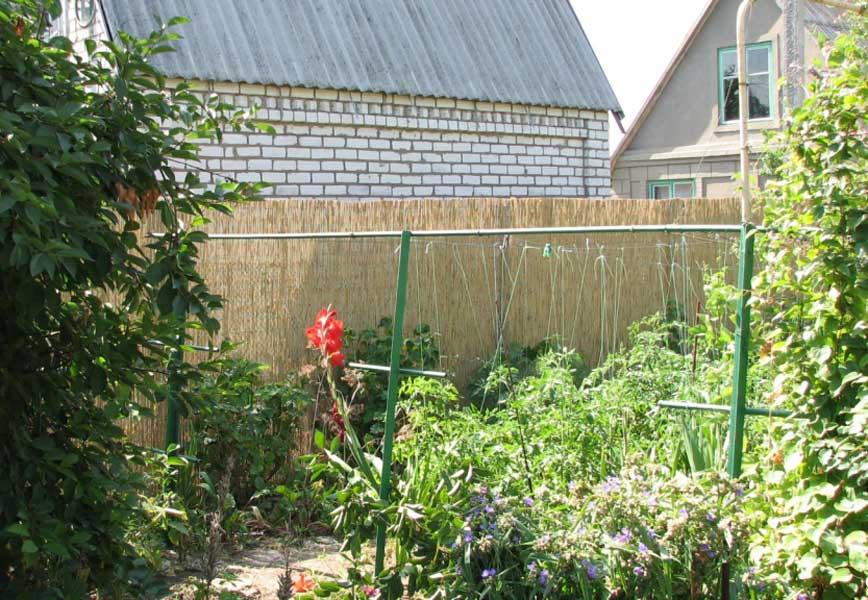 Тростниковые маты в качестве забора на даче