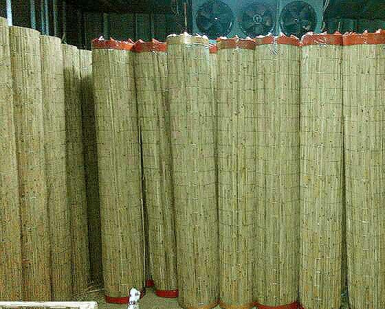 Заборы из тростника