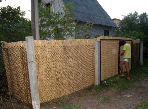 Забор из рабицы и тростниковый забор