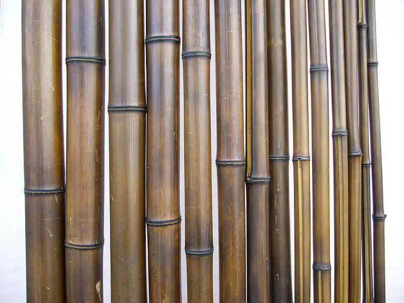 Бамбук шоколад