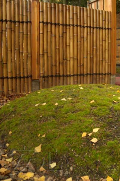 ограда из бамбука
