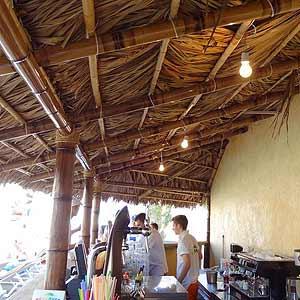 Пальмовый лист и бамбук