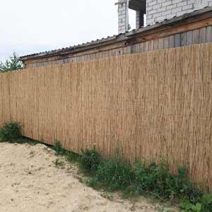 Забор из тростника