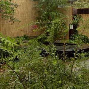 тростниковые маты на заборе