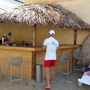 Оформление стойки бара. Бамбук и пальма.