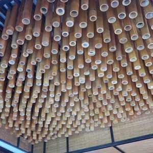 Бамбук - оформление потолка.