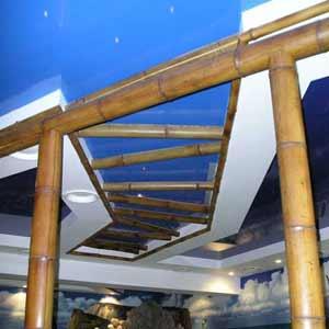 Бамбуковые стволы и половинки