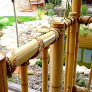 Бамбук в интерьере.<br />Бамбуковая перегородка и<br />канат.