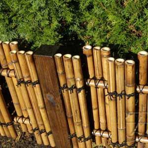 невысокая ограда из<br />бамбука