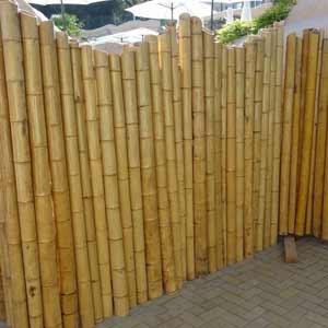 Бамбуковый забор.<br />Бамбуковые изгороди.