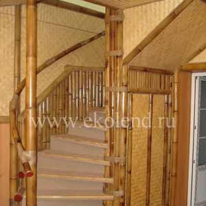 Бамбук в интерьере дома<br />фото