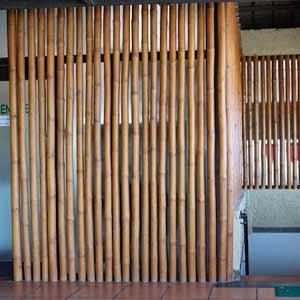 Бамбук в интерьере<br />ресторана _1
