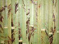 Бамбуковые обои фисташковая черепаха