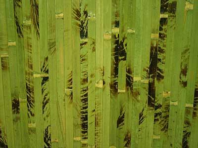 Бамбуковые обои зелёная черепаха