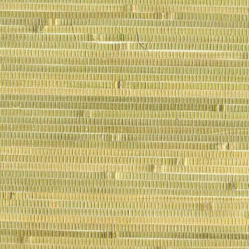 Бамбук тростник GPW 35-501
